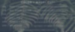 Screen Shot 2020-05-24 at 3.03.45 PM.png