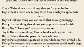 Two Week Gratitude Challenge