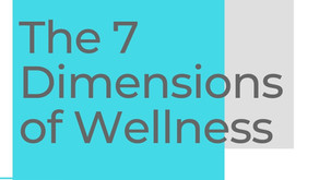 The Seven Dimensions of Wellness (aka the foundation)