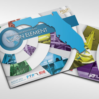 Florida Vision Element