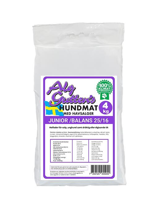 Alggutten Junior/Balans