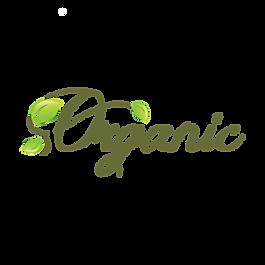 Organic Food Badge 16