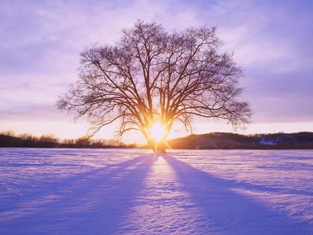 Eine lichtvolle Wintersonnenwende!