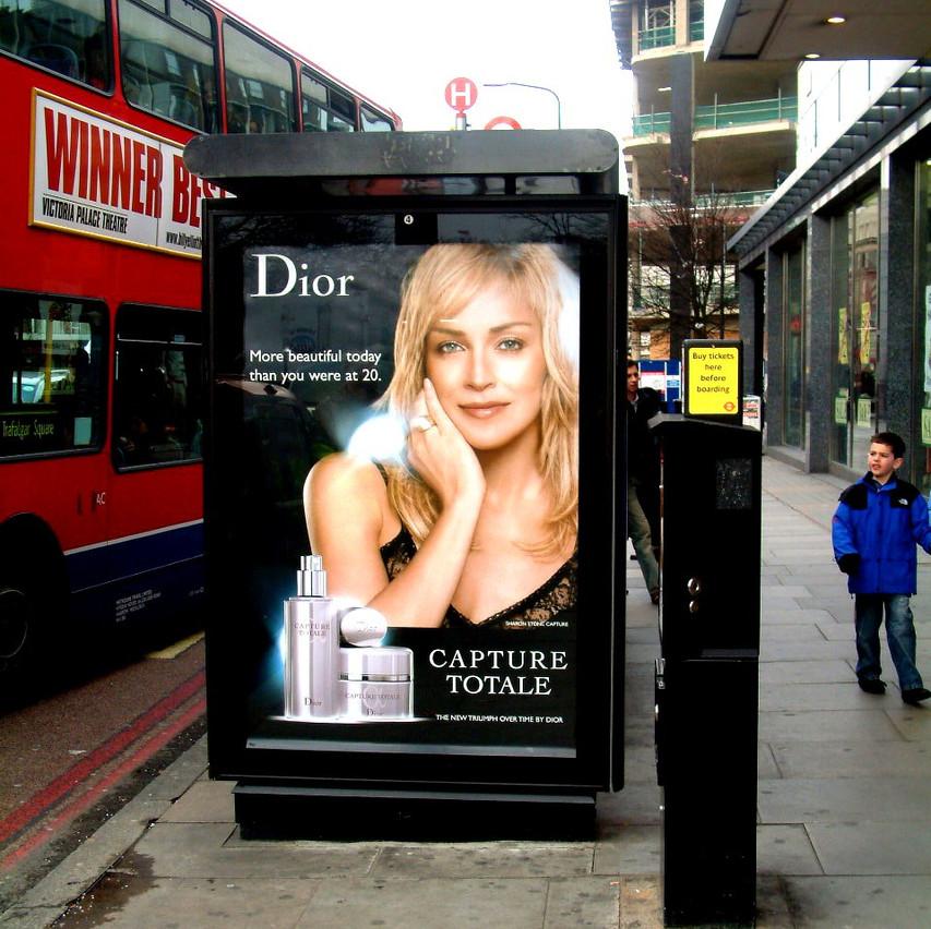DIOR - Sharon Stone
