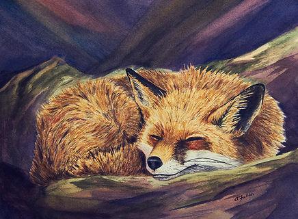 Fox Final_Amanda_March21_4V9A8693.jpg