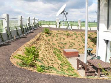 Průhonice - soukromá zahrada (subdodávka)