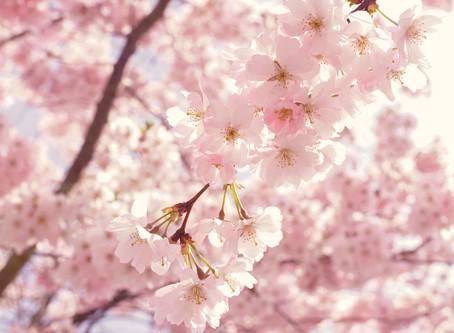 Könnyed tavaszi és nyári illatok