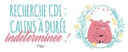 CALINS-A-DUREE-INDETERMINEE-copie