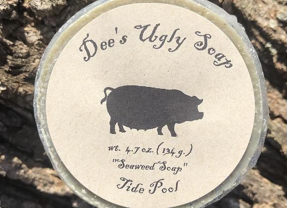 Tide Pool (Seaweed Soap)