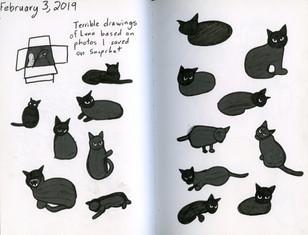 sketchbook008_edited.jpg