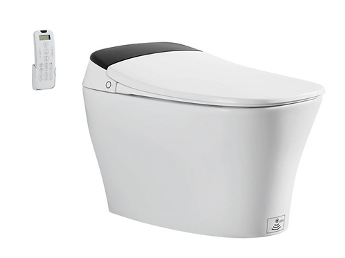 Smart Toilet Model: Z