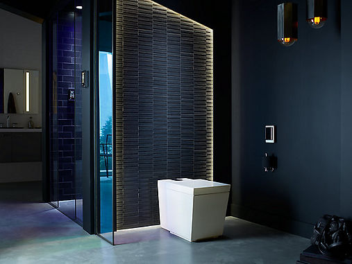 cyber bathroom .jpg