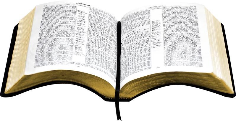 Bible open pages.png