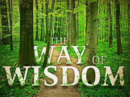 Lessons on Wisdom