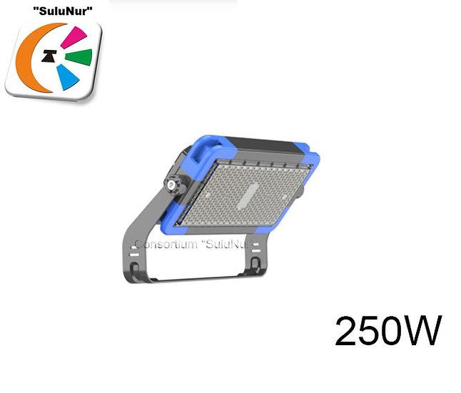СКУ-М-09-АСЕИ 250W IP66 LED