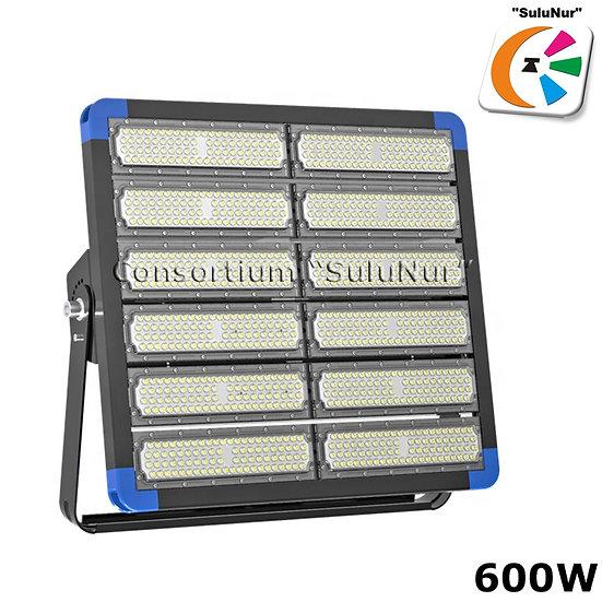 СКУ-М-12-АСЕИ 600ВТ 78000ЛМ LED IP66
