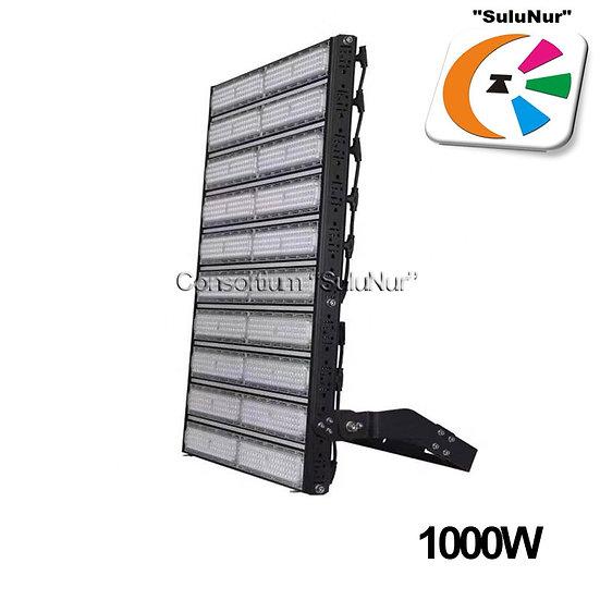 СКУ-М-10-АСЕИ 1000W LED