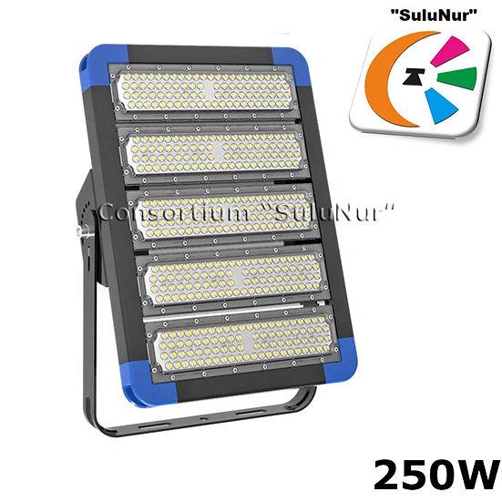 СКУ-М-12-АСЕИ 250ВТ 32500ЛМ LED IP66