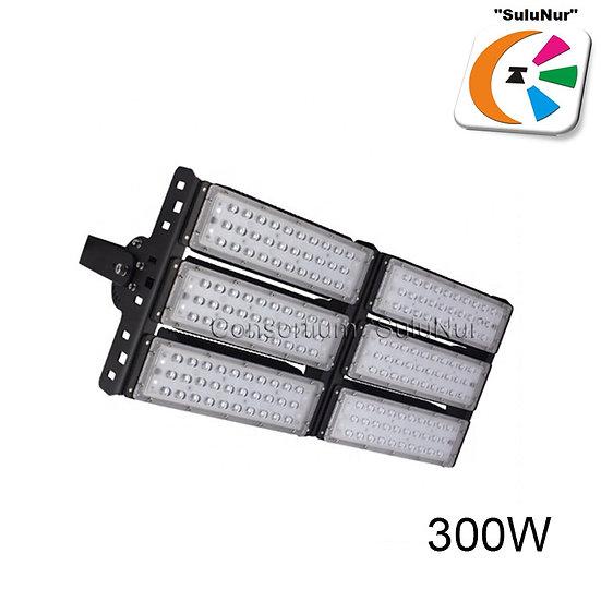 СКУ-М-10-АСЕИ IP65 300W LED