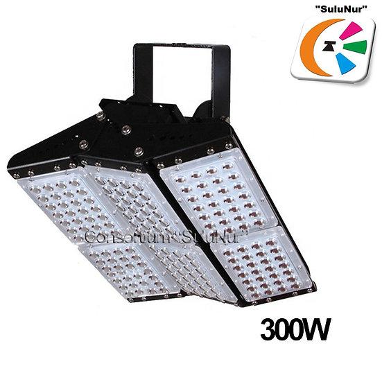 СКУ-М-08-АСЕИ 300W IP66 LED