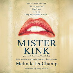 MisterKink_AudiobookCover.jpg