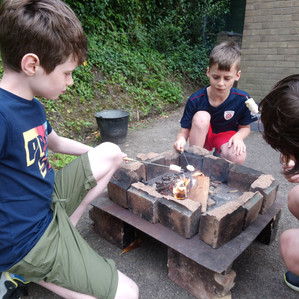 Wood and Campfires