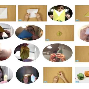 Origami Night