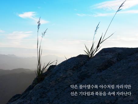 열왕기하 12장, 7월9일 금요일