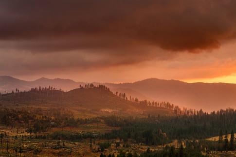 La Foresta Ridge.jpg