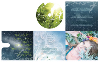 CD Packaging | Kendra Faye