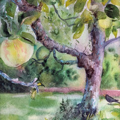 Under the Apple Tree by Susanne Taylor