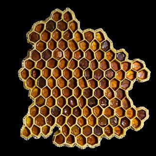 Hani / 2017
