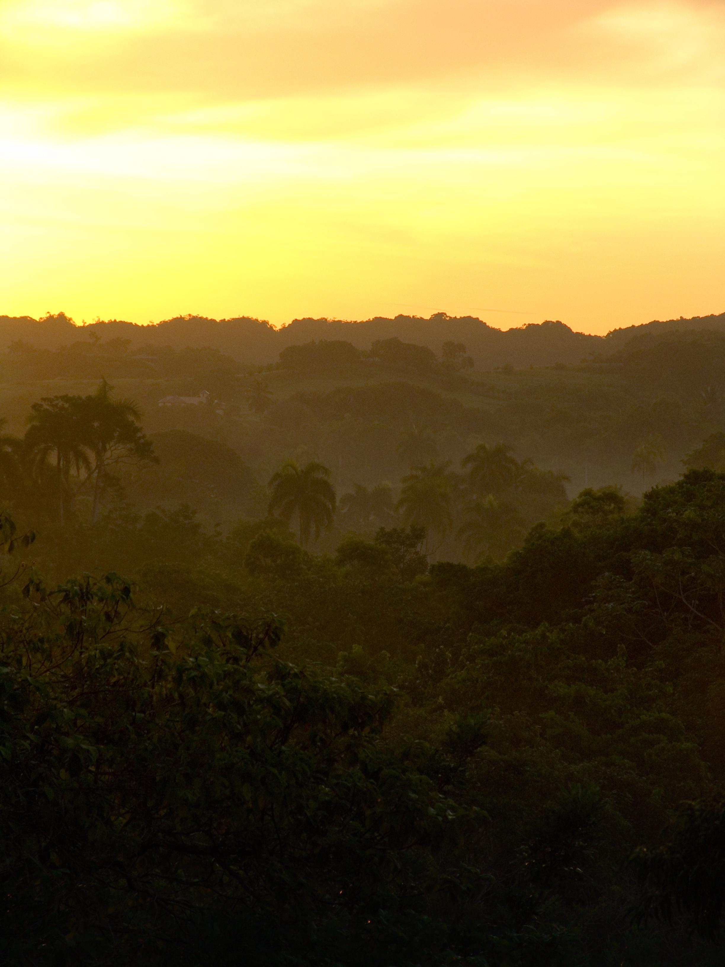 Hacienda Del Rey Sunsets
