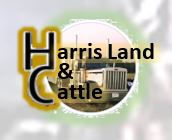 HarrisLandCattle.JPG