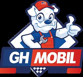 light-illustrative logo.png