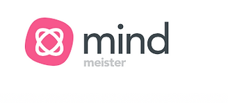 mindmeister managen brainstormen notizen planen