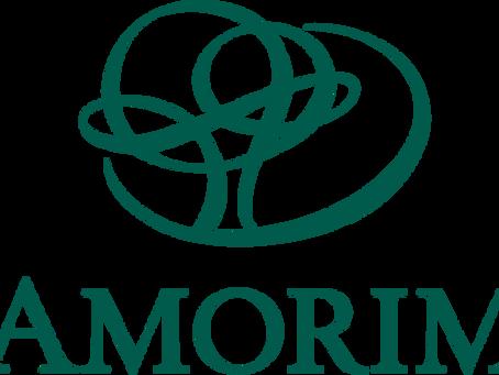 Installing and Repairing Amorim's WISE