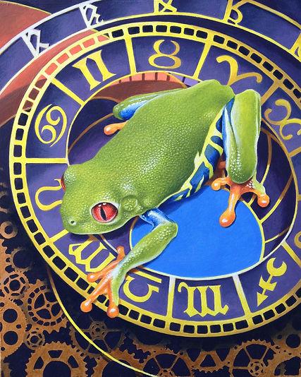 Red Eyed Treefrog