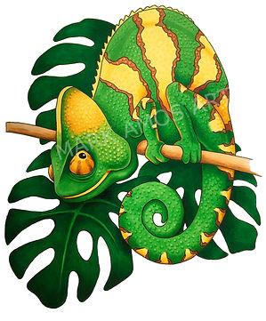 Chameleon watermark.jpg