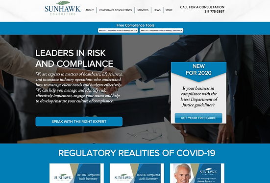 sunhawk-consulting.png