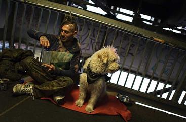 אדם וכלב