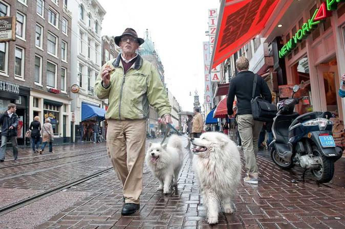 צילום רחוב אמסטרדם