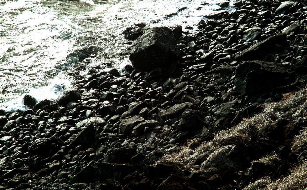 20022003-DSCF6903.jpg