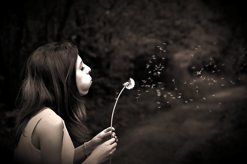 summer-girl-dandelion-wish-39485_edited_