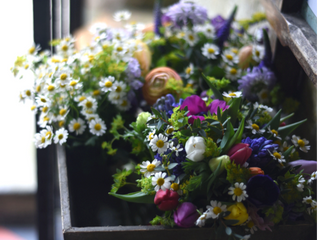Spring Flower Workshop: Booking Now!