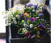Spring Flower Workshop: Booking Now!