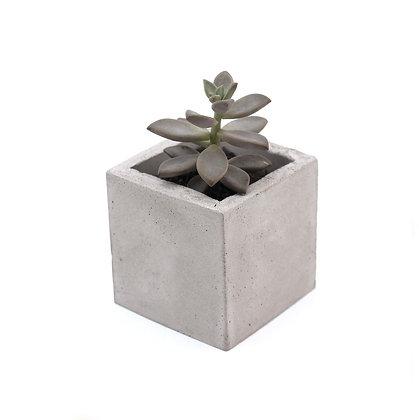 imã de geladeira vaso de concreto geométrico estúdio plume decoração minimalista moderna industrial escandinava moderna