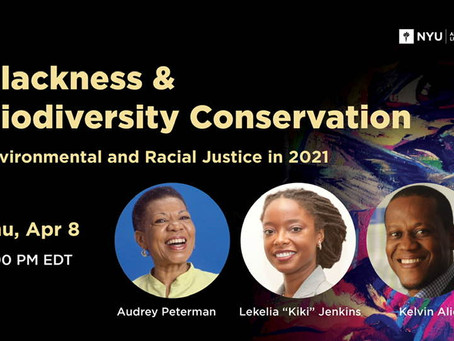 Blackness and Biodiversity Conservation - Environmental and Racial Justice in 2021.