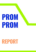 promprom_report2.jpg