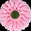 Thumbnail: 3-PC 16-PT Flower Plastic Cutter [small]